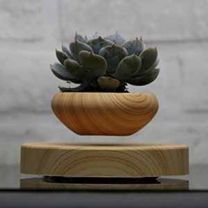 Levitating Air Bonsai Pot - Magnetic Levitation Suspension flower and air bonsai pot